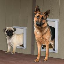 Pine Creek Structures Kennel Option: Magnetic Pet Doors